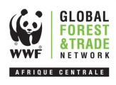 Promoting FSC certification in the Congo Basin together